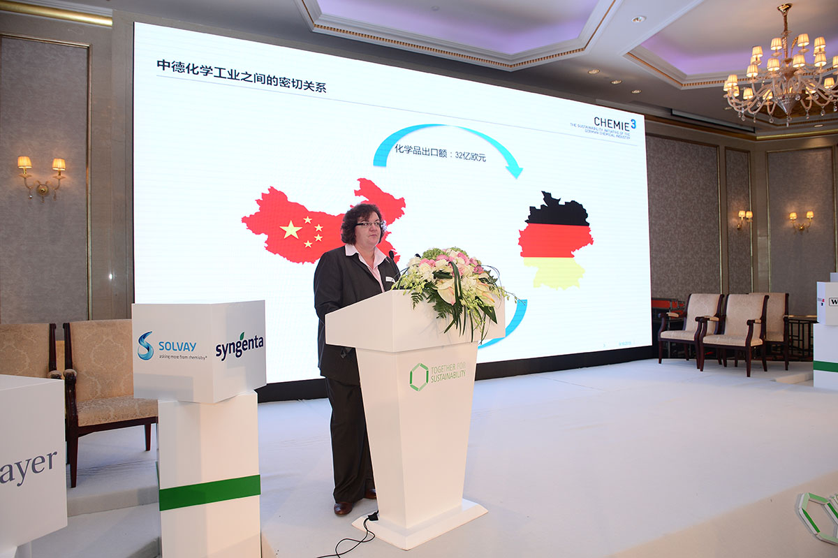 Tfs Speaker At Event In China